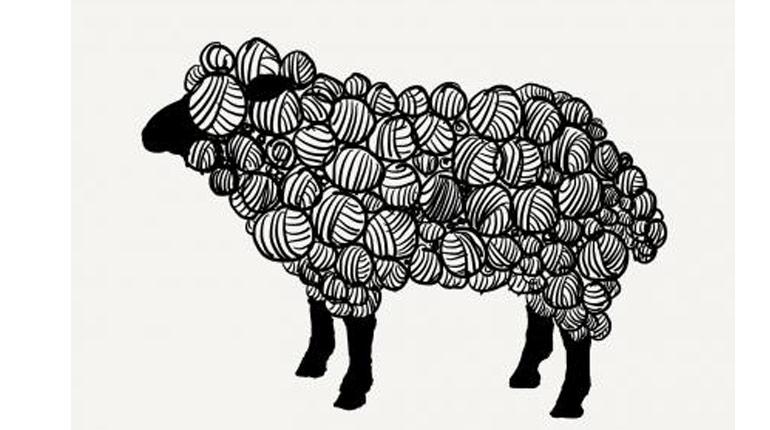sheep artwork